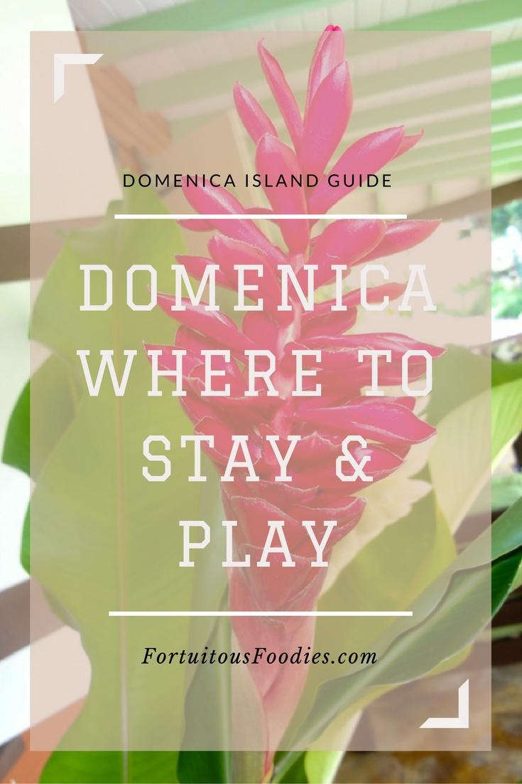 Domenica Island Guide